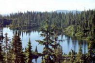 camping vancouver island on battleship lake on mt washington, vancouver island british columbia canada