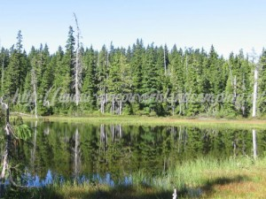 vancouver island lake to camp at