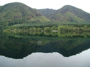 vernon lake recreation campground