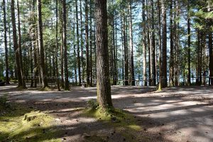 brewster lake campgrounds north of campbell river on vancouver island