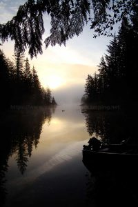 amor lake foggy sunrise