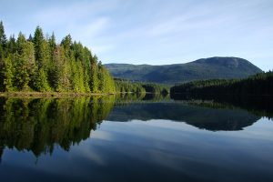 mohun lake recreation site on vancouver island camping